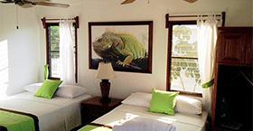 green-iguana-cabanaHP