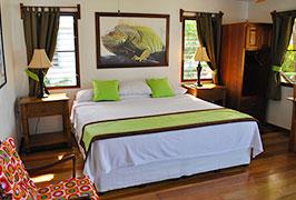 green-iguana-cabana