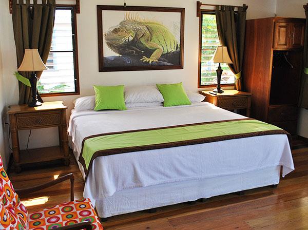 green-iguana-room.jpg